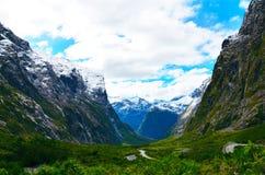 Straße, Nationalpark Fiordland stockfotos