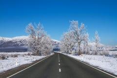 Straße in Neuseeland Stockbild