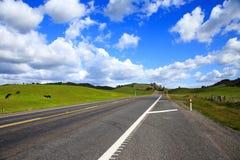 Straße in Neuseeland Stockfotografie