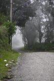 Straße in Paranapiacaba, Brasilien Stockfotos