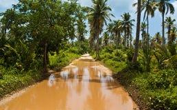 Straße Playa Rincon zur Pfütze stockfoto