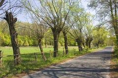 Straße in Polen Lizenzfreie Stockbilder