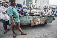Straße-Reiniger mit einem Warenkorb und Hunden Stockbild