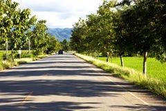 Straße am Reisbauernhof im Gebirgshintergrund Stockfoto