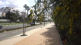 Straße in Rishon Lezion in Israel stock footage