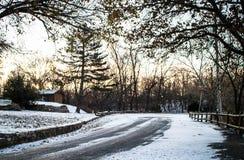 Straße, Schnee und Baum Stockfotografie