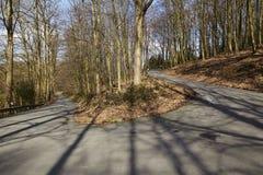 Straße - Serpentin in einen Wald lizenzfreies stockbild