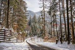 Straße in Skiort Poiana Brasov, Brasov, Rumänien - Dezember 2018 lizenzfreie stockfotos