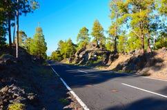 Straße Teide im Nationalpark, Tenerife lizenzfreie stockfotografie