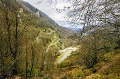 Straße tru der Wald Lizenzfreie Stockfotos