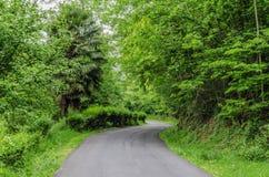 Straße tru der Wald Stockfotografie