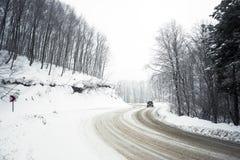 Straße und Bäume im Blizzard Lizenzfreie Stockbilder