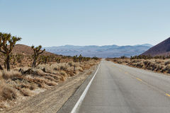 Straße und Berg im Nationalpark, USA Stockfotos
