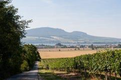 Straße und Feld auf Land, nahe kleinem Dorf im Hintergrund Lizenzfreie Stockbilder