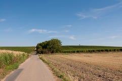 Straße und Feld auf Land, nahe kleinem Dorf im Hintergrund Stockbilder