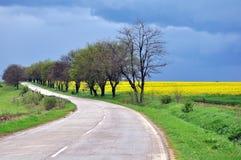 Straße und Felder Lizenzfreie Stockbilder