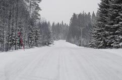 Straße und Fichten bedeckt mit Schnee lizenzfreie stockfotos