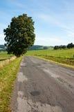 Straße und Landschaft Stockfotos