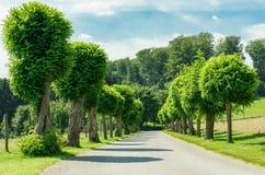 Straße und Natur Lizenzfreie Stockfotos
