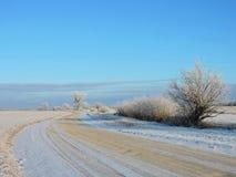 Straße und schöne schneebedeckte Bäume im Winter, Litauen Lizenzfreie Stockfotografie