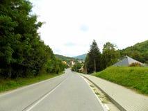 Straße und Wald Stockfotografie