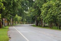 Straße unter den Bäumen Lizenzfreie Stockfotos
