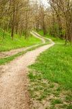 Straße unter grünem Gras Im Wald Lizenzfreies Stockbild