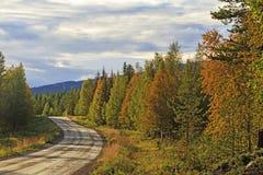 Straße unter Herbstwald stockfoto