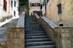 Straße von altem Kotor, Montenegro-Leiter mit drei Katzen, die etwas Lebensmittel warten Lizenzfreie Stockfotos