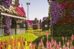 Straße von Blumen im Wunder-Gartenpark, Dubai Stockbild