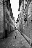 Straße von Chambery, Frankreich Lizenzfreies Stockbild