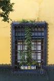 Straße von Sevilla Lizenzfreies Stockfoto