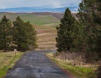 Straße von Steptoe-Butte Lizenzfreies Stockfoto
