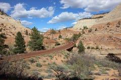 Straße warf die Berge in Zion National Park lizenzfreie stockfotografie