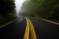 Straße zeichnet das Kurven in Misty Forest In Oregon Stockbilder
