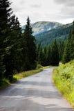 Straße zu den Bergen Lizenzfreies Stockfoto
