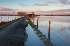 Straße zu einem holländischen Bauernhof überschwemmte durch Wasser Stockbild