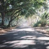Straße zu Kalapana stockbild
