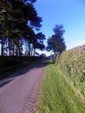 Straße zu neuem et al., Northumberland, England Stockfotos