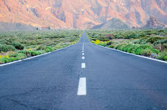 Straße zu Teide Stockbild