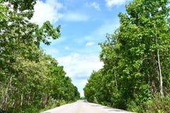 Straße zum Berg Lizenzfreie Stockbilder
