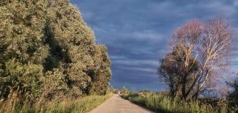 Straße zum Dorf Stockfotografie