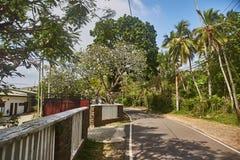Straße zum Dschungelstrand Unawatuna Hotel auf der Straße stockfotografie