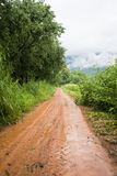 Straße zum Getreidefeldeingang Lizenzfreies Stockbild