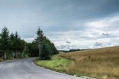 Straße zum Kieferwald stockfotos