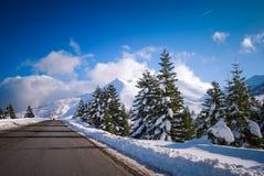 Straße zum Schneewald Stockfotografie