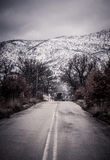 Straße zum Schneewald Stockfoto