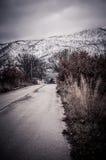 Straße zum Schneewald Stockbilder