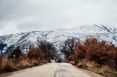 Straße zum Schneewald Lizenzfreies Stockbild
