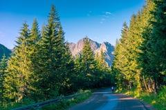 Straße zum See Morskie Oko im Tatras lizenzfreies stockbild
